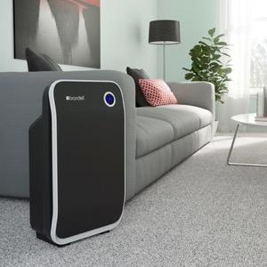 Brondell air filter
