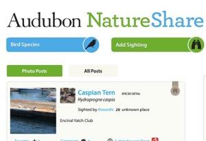 Nature Share