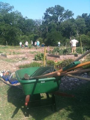 Community Gardens of Oak Cliff