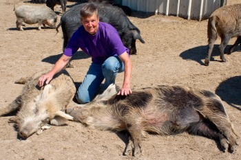 Atlasta Home founder Chris Hinterman & pig scratch