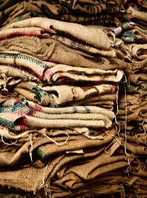 Noble Coyote Coffee burlap bag