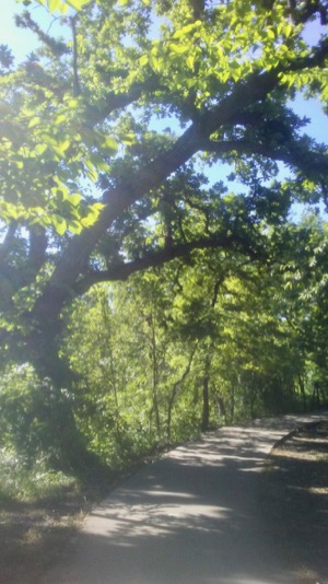 White Rock Creek Trail