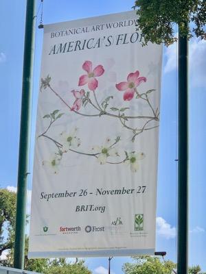 America's Flora