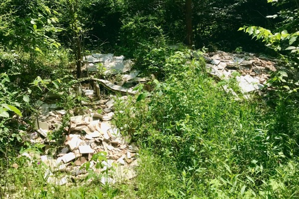 Illegal dumping at McCommas Bluff Preserve