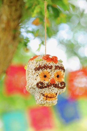 Rooster Home and Hardware birdseed sugar skull