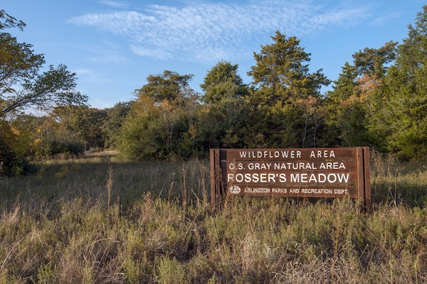 O.S.Gray Natural Area - Rosser's Meadow