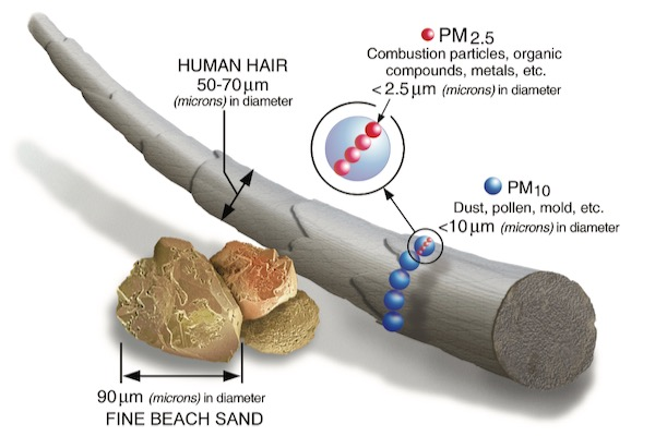 Particulate Matter illustration by EPA
