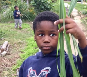 Promise of Peace Gardens participant with lemongrass