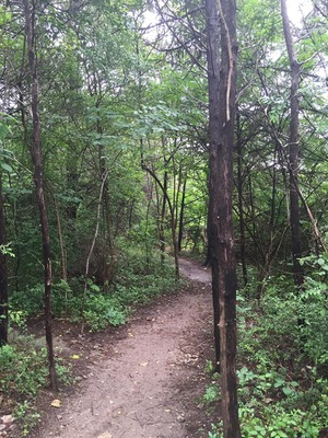 Oak Cliff Nature Preserve