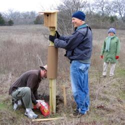 Spring Creek Forest Preserve bluebird box
