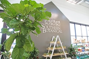 Southern Botanical at TreeHouse