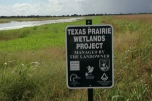 Ducks Unlimited Texas Prairie Wetlands Project