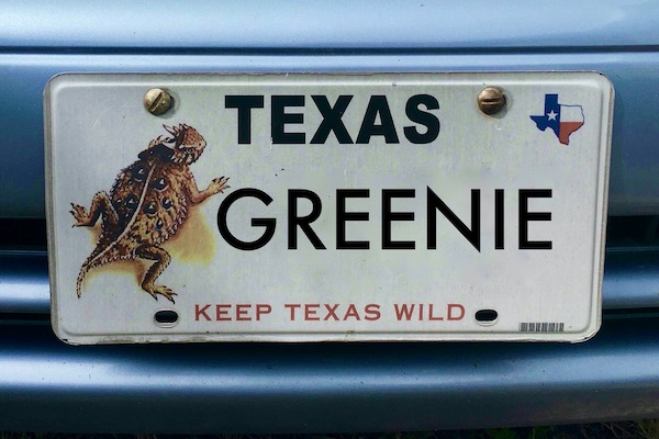Texas Conservation Plate