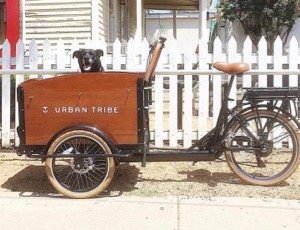 Urban Tribe Cargo Bike