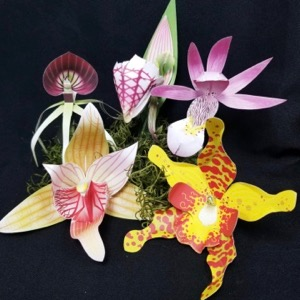 Orchid-Gami