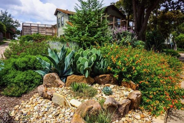 Dallas Waterwise Landscape Tour
