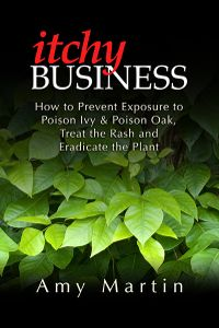 Itchy Business book cover