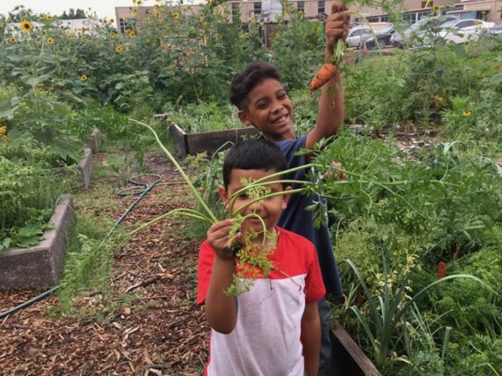 Dallas Community Gardens Fulfill Promise Made Decade Ago