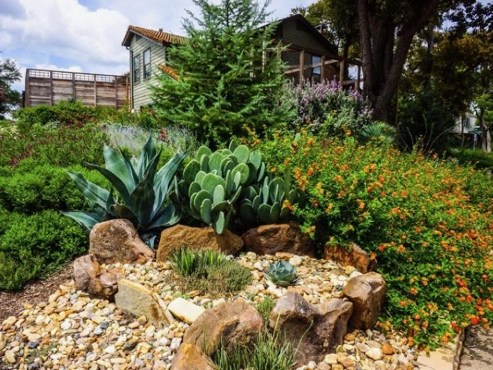 Fall waterwise tours to showcase Texas-tough yards | GreenSource DFW