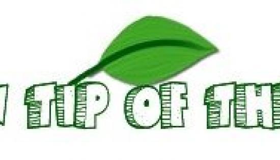 Green Tips logo
